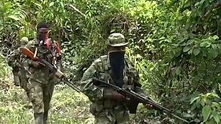 Colombia: torna la guerriglia dell'ELN