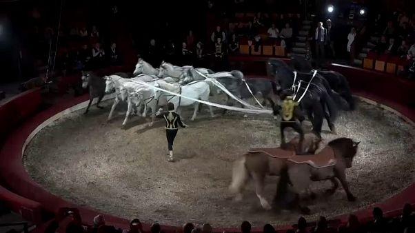 Circos de todo el mundo reunidos en Budapest