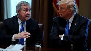 """Trump bestreitet """"Drecksloch-Staaten""""-Äußerung"""