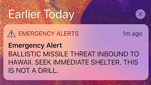 Hawaii did not have 'reasonable' safeguards to stop false missile alert, says regulator