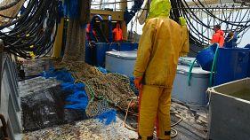 Fischen mit Strom bleibt in der EU verboten