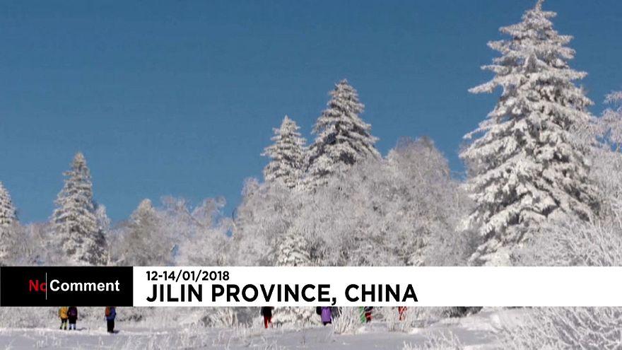 A 'floresta branca' de Jilin