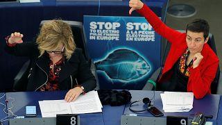 Members of the European Parliament Ska Keller (R) of Germany