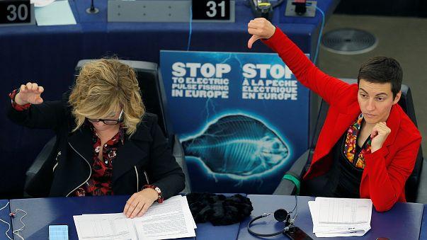 Европарламент проголосовал за запрет электролова рыбы