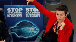 EU-Parlament: Dämpfer für Elektrofischerei