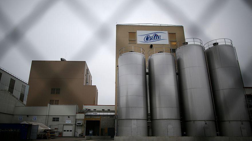 Latte contaminato, perquisizioni in 5 sedi della Lactalis