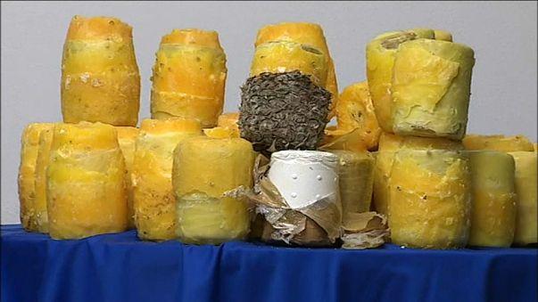 Cilindros de cocaína extraídos de las piñas