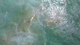 Αυστραλία: Διάσωση σέρφερ από drone