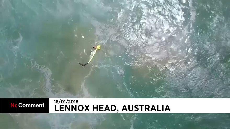 Drón mentette ki az elsodródott úszokat
