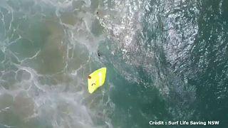 Australie : deux ados sauvés de la noyade par un drone
