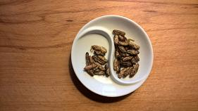 Insects could be the next hot ingredient used by European restaurants