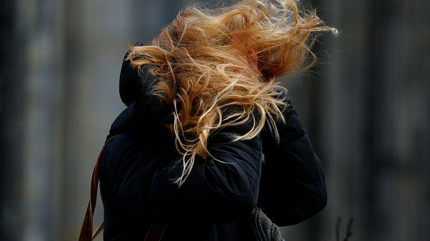 شاهد: الرياح القوية تطيح بالمشاة في شوارع هولندا