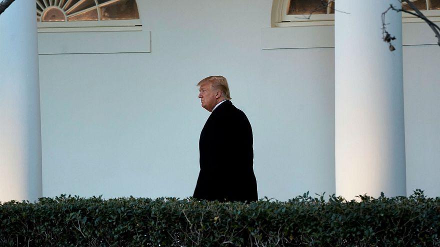 One year on: America under Trump