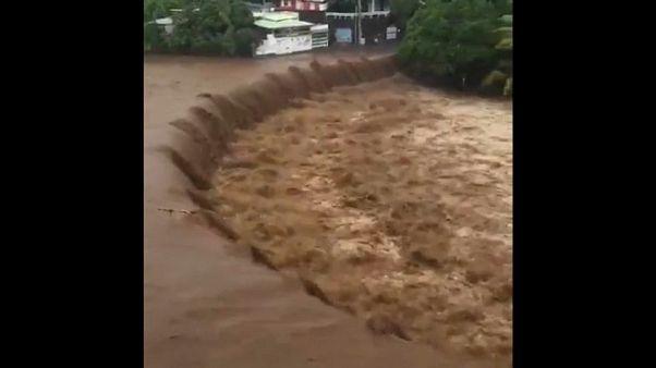 L'île de la Réunion soufflée par Berguitta