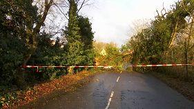 Friederike Fırtınası Batı ve Kuzey Avrupa'yı vurdu: En az 12 ölü