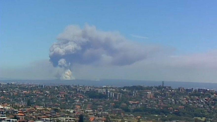 Turistas desalojados por el incendio del Parque Nacional Real de Sídney