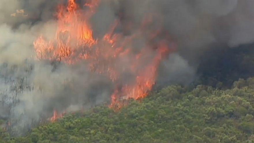Le sud de Sydney en proie aux flammes