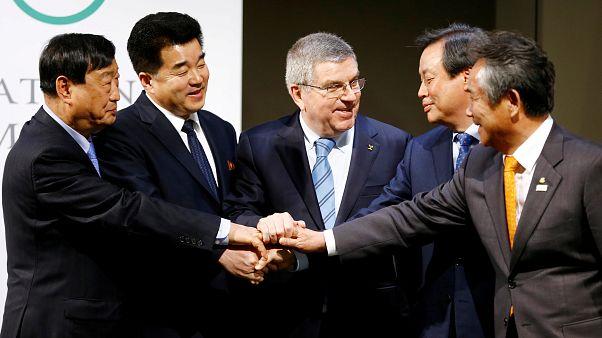 Les deux Corées défileront ensemble aux JO d'hiver