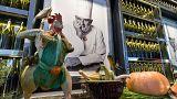 """Bocuse, la disparition d'un """"génie culinaire"""""""