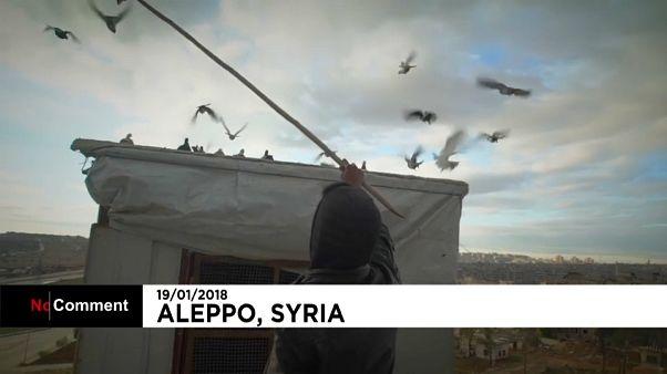Il ristoro del soldato siriano
