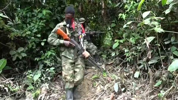 El diálogo entre el Gobierno colombiano y el ELN podría retomarse