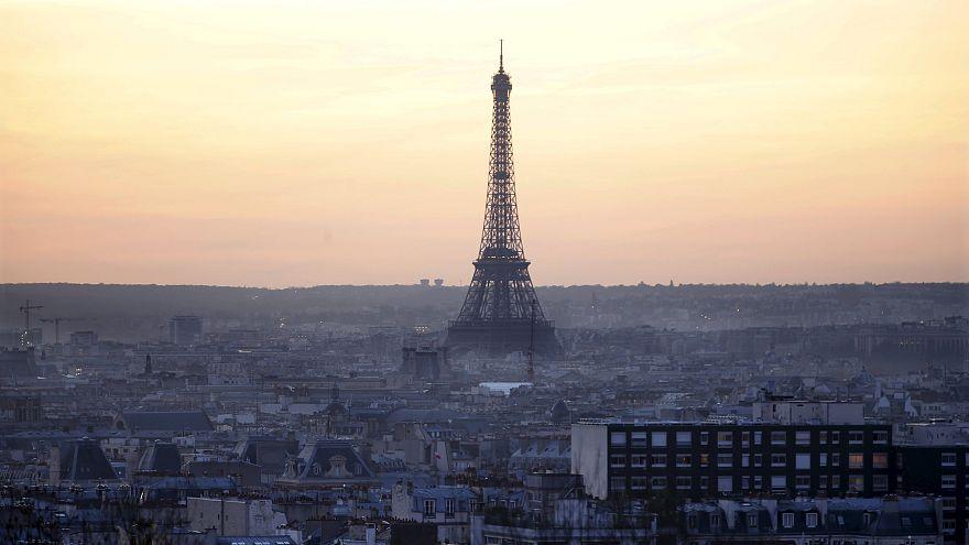 هجوم من الفئران المتوحشة على مناطق سياحية بباريس