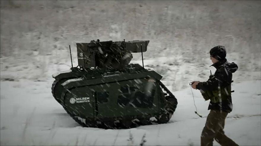 Эстония берёт на службу роботов
