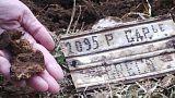 Βρέθηκαν τα οστά Ελλήνων πεσόντων στην Αλβανία
