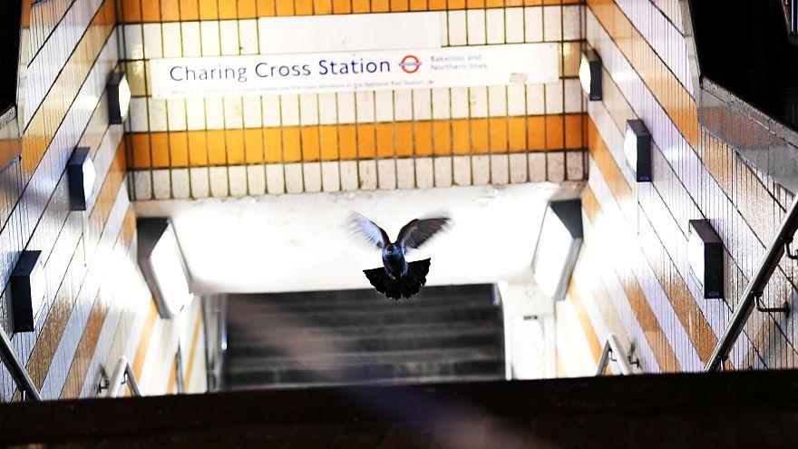 Fuga de gás obriga a evacuações no centro de Londres