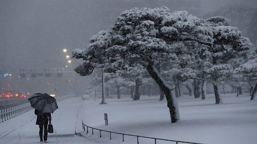 Токио завалило снегом