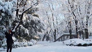 Maltempo in Giappone: Tokyo ricoperta da un manto nevoso