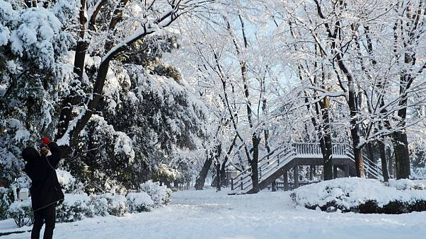 Χιονοθύελλα σάρωσε το Τόκιο