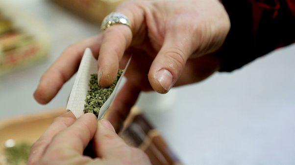 Une amende forfaitaire pour les consommateurs de cannabis?