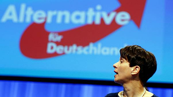 Former AfD leader Frauke Petry