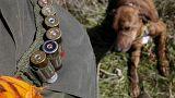 سگی با شلیک گلوله شکارچی را کشت