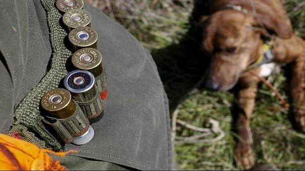 كلب صيد يقتل صاحبه بإطلاق النار عليه دون قصد في روسيا