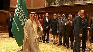Saudi billionaire prince freed in corruption investigation