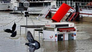 Überflutung in Paris: Höchststand der Seine bald erreicht