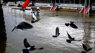 Γαλλία: Συναγερμός για τη στάθμη του Σηκουάνα