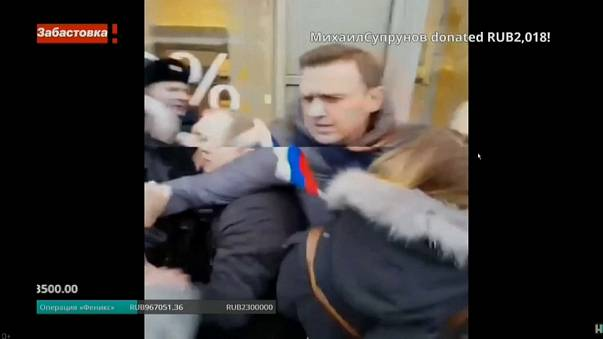 Navalny released after arrest in Moscow rally