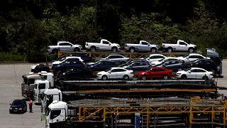 برلين ترفض إخضاع قردة وبشر لتجارب انبعاثات عوادم السيارات