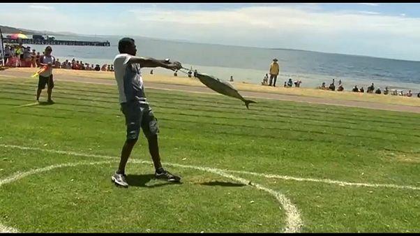 Чемпионат мира по метанию тунца