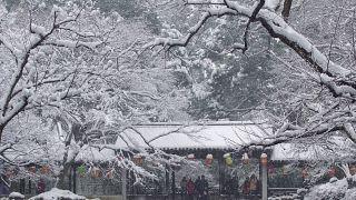 Китай завалило снегом