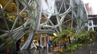 «Σφαίρες»: Το τροπικό εργασιακό περιβάλλον της Amazon