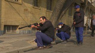 فيديو: قناصة لاصطياد مليوني جرذ غزوا شوارع طهران