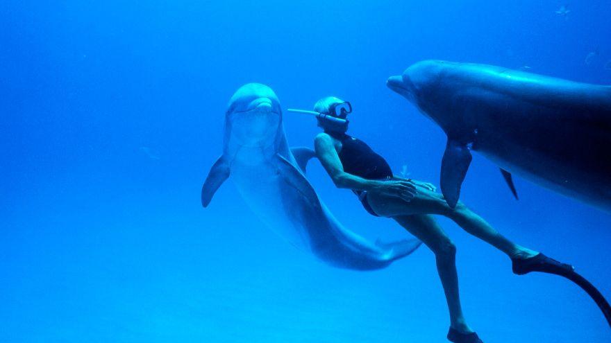 Ο «Dolphin Man» του «Απέραντου Γαλάζιου»