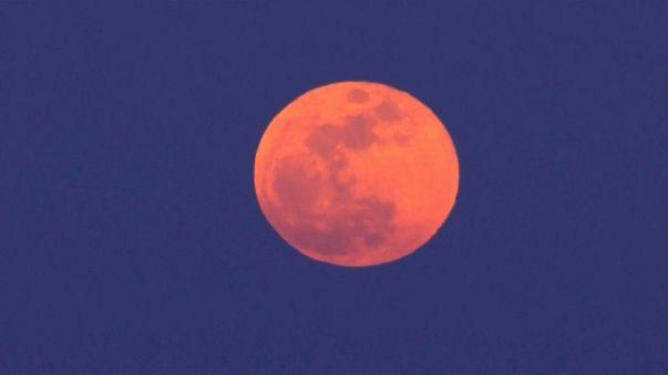 Medio planeta disfruta de la súper luna de sangre
