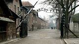Polonya: Tartışmalı Holokost yasa tasarısı Senato'da kabul edildi