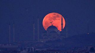 """بالصور: مناظر خلابة للقمر """"الأزرق الدموي"""" من بقاع مختلفة من العالم"""