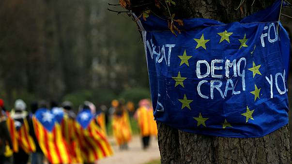 Less than half of EU countries are 'fully democratic': report